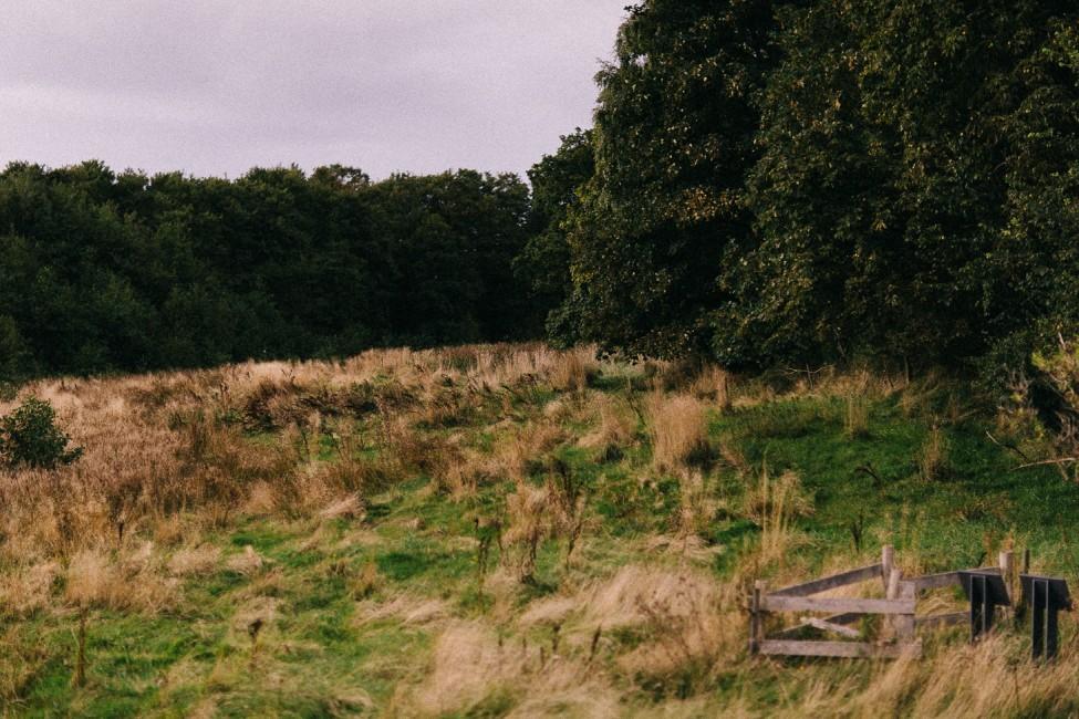 Beautiful landscape photography in Denmark.